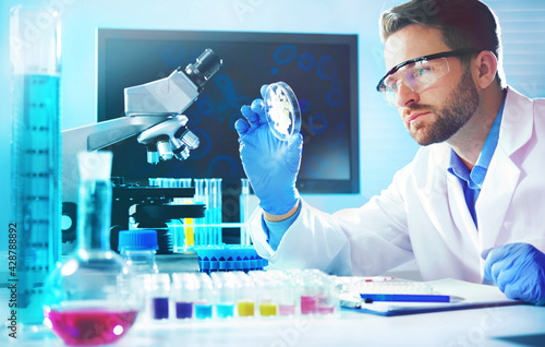 Obraz na plátně Medical doctor or biotechnology research scientist working in the laboratory