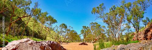 Kakadu Nation Park, Australia (Yellow Water River)   - fototapety na wymiar