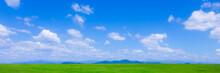 緑の草原と青空パノラマ