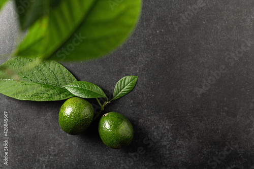 two ripe avocados with leaves on a gray stone background, top view, empty space for text
