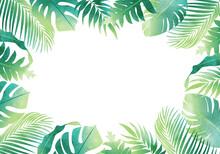 夏のモンステラやヤシの葉など数種類のトロピカルなベクターイラストフレーム(コピースペース,水彩風)
