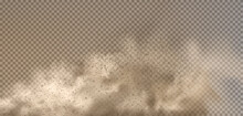 Dust Cloud With Particles With Dirt,cigarette Smoke, Smog, Soil And Sand Particles. Realistic Vector Isolated On Transparent Background.