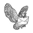 Owl with mail letter sketch engraving vector illustration. T-shirt apparel print design. Scratch board imitation. Black and white hand drawn image.