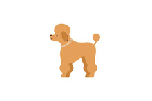 Decorative Dog - French Poodle In A Collar. Dog Icon Or Logo Element.Vector Illustration. Flat Style. Standard Breed Design, Side View. Cartoon Character Of A Dog. Pet..