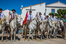 Escorts - Security Guards On White Horses