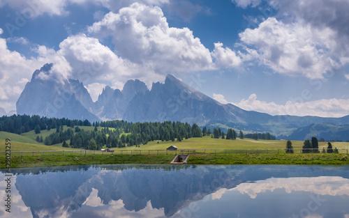 The Saslonch, Sassolungo, Langkofe. Dolomites, Val Gardena, South Tyrol, Italy #429023259