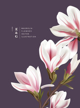 Natural Magnolia Realistic Flowers Contemporary Invitation Layout Designs. Event Marketing Floral Pattern Background Vector Illustration.