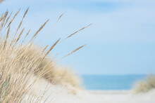 Baltic Sea Dunes Over Blue Coastline Background