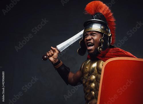 Billede på lærred Screaming imperial soldier with shield and sword