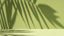 3d Render, Simple Abstract Green Background Illuminated With Bright Sunlight, With Palm Leaf Shadow. Modern Minimal Showcase Scene For Product Presentation
