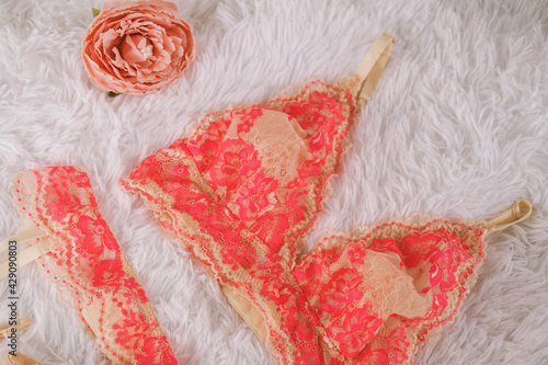 Fotografering Beautiful peach lace bodice without bones hanging on a hanger