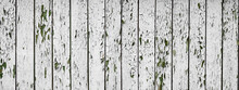 White Flaky Paint On A Old Weathered Wooden Fence. Vintage Wood Background. Peeling Paint Flakes. Old Weathered Wooden Plank Painted In White Color.
