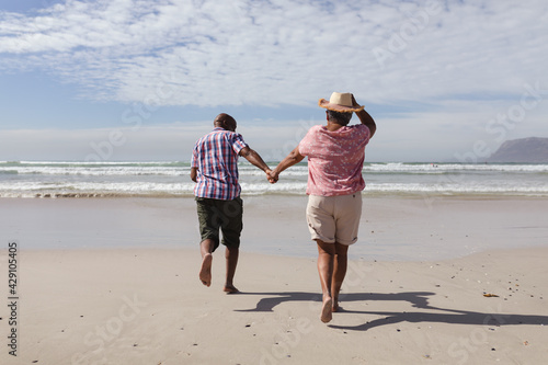 Rear view of senior african american couple holding hands running on the beach