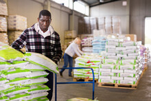 Confident African American Warehouse Cheerful Smiling Worker Loading Sacks On Trolley Cart.African American Male Gardener Buying Ground And Fertilizers, Loading Bags On Handtruck In Warehouse Of Store