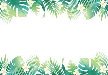 夏の植物の葉っぱ数種類のベクターイラストフレーム背景