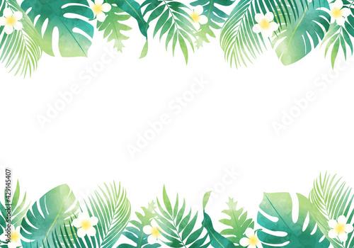 夏の植物の葉っぱ数種類のベクターイラストフレーム背景 - fototapety na wymiar
