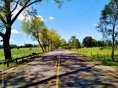 Fotografering Carretera