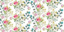 Australian Plants, Floral Pattern, Desert Flame, Waratah, Eucalyptus, Lily Pilly
