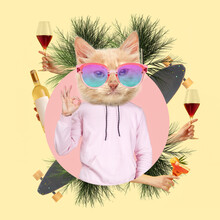 Contemporary Art Collage, Modern Design. Party Mood. Man In Pink Outfit Headed By Stylish Cat Surrounded With Cocktail Glasses