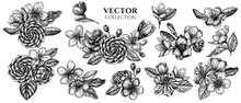 Flower Bouquet Of Black And White Hibiscus, Plum Flowers, Peach Flowers, Sakura Flowers, Magnolia Flowers, Camellia Japonica