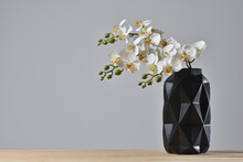 Modern Black Vase With Orchid Flower On Gray Background.