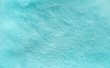 Abstract Blue Green Color Fluffy Wool Texture Background