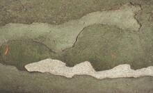 Camouflage Pattern On Plane Tree Bark Background