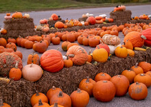 Pumpkins And Gourds For Sale On Hay Bale Display At A Roadside Farmer Market.
