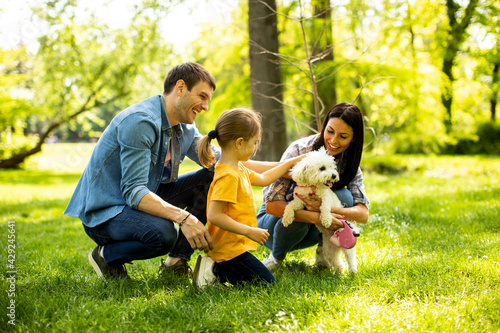 Fotografering Beautiful happy family is having fun with bichon dog outdoors