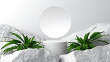 Simple Product Placement Background On White Geometry Decorated With Big Green Trees And Large Rocks Abstract Natural Style. 3D Scene.