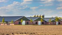Large Modern Barns