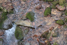 Mossy Stones In A Chrystal Clear Mountain Stream