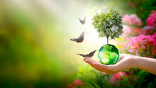 Earth Day Or World Environment Day Concept. Save Our Planet, Restore And Protect Green Nature, Sustainable Lifestyle And Climate Literacy Theme. Globe, Tree In Hand And Flying Butterflies, 22 April.