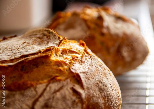 Obraz na plátně home-made bread wheat rye sourdough oven