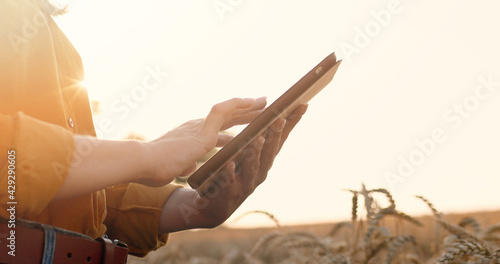 Fotografija Close up shot of Caucasian woman hands holding tablet and scrolling while searching internet outdoors
