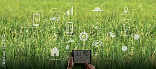 agriculture technology concept man Agronomist Using a Tablet in an Agriculture Field read a report integrate artificial intelligence machine learning technology 5G