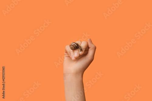Obraz na plátně Hand with snail on color background