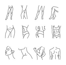 Female Body Icon Set - Thin Line Style, Vector Collection