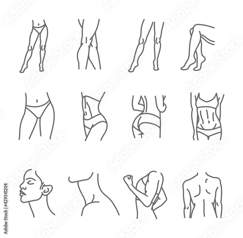 Valokuva Female body icon set - thin line style, vector collection