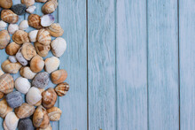Summer Beach Background, Seashells On Light Blue Background. Top View. Sea Summer Vacation Background