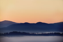 View Of The Mountains In The Fog And The Spruce Forest In The Early Morning. Magnificent Mountain Morning.