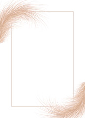 Frame of dried natural pampas grass. Floral ornament elements in boho style. Vector illustration of cortaderia selloana. New trendy home decor.