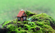 Toy House On Moss, Green Natural Forest Background. Symbol Of Family, Mortgage, Real Estate Concept. Eco Friendly House.