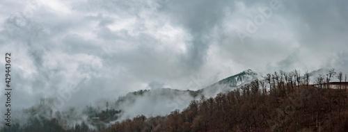 Obraz na plátně Foggy haze and dramatic sky at the mountainside with perennial trees