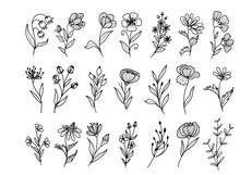 Set Of Wildflower Doodle Line Art With Flower And Leaves