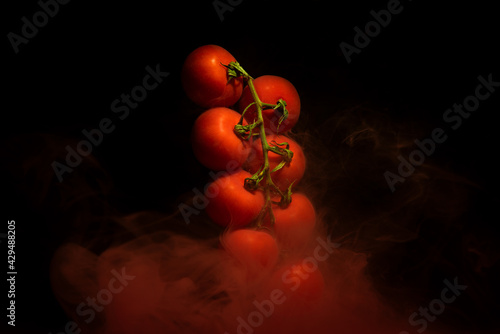 Tomatoes on a twig, vegetable plant with red motion liquid on black background #429488205