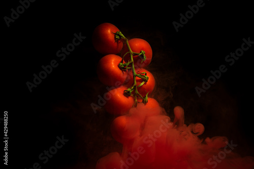 Tomatoes on a twig, vegetable plant with red motion liquid on black background #429488250