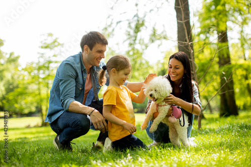 Slika na platnu Beautiful happy family is having fun with bichon dog outdoors