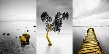 Painting Printed Yellow Wooden Bridge Next To Lonely Old Tree
