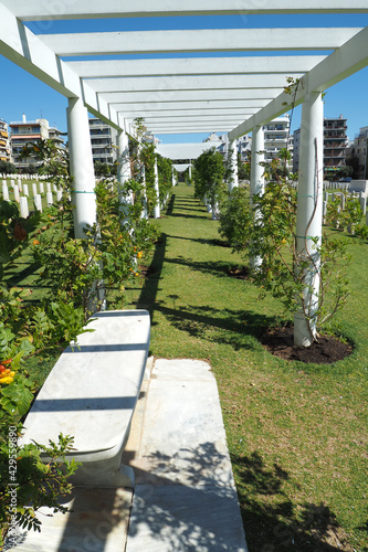 Fototapeta Μilitary park cemetery in Alimos district in remembrance of British troops that